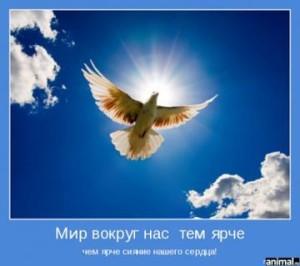 siyanie_serdca